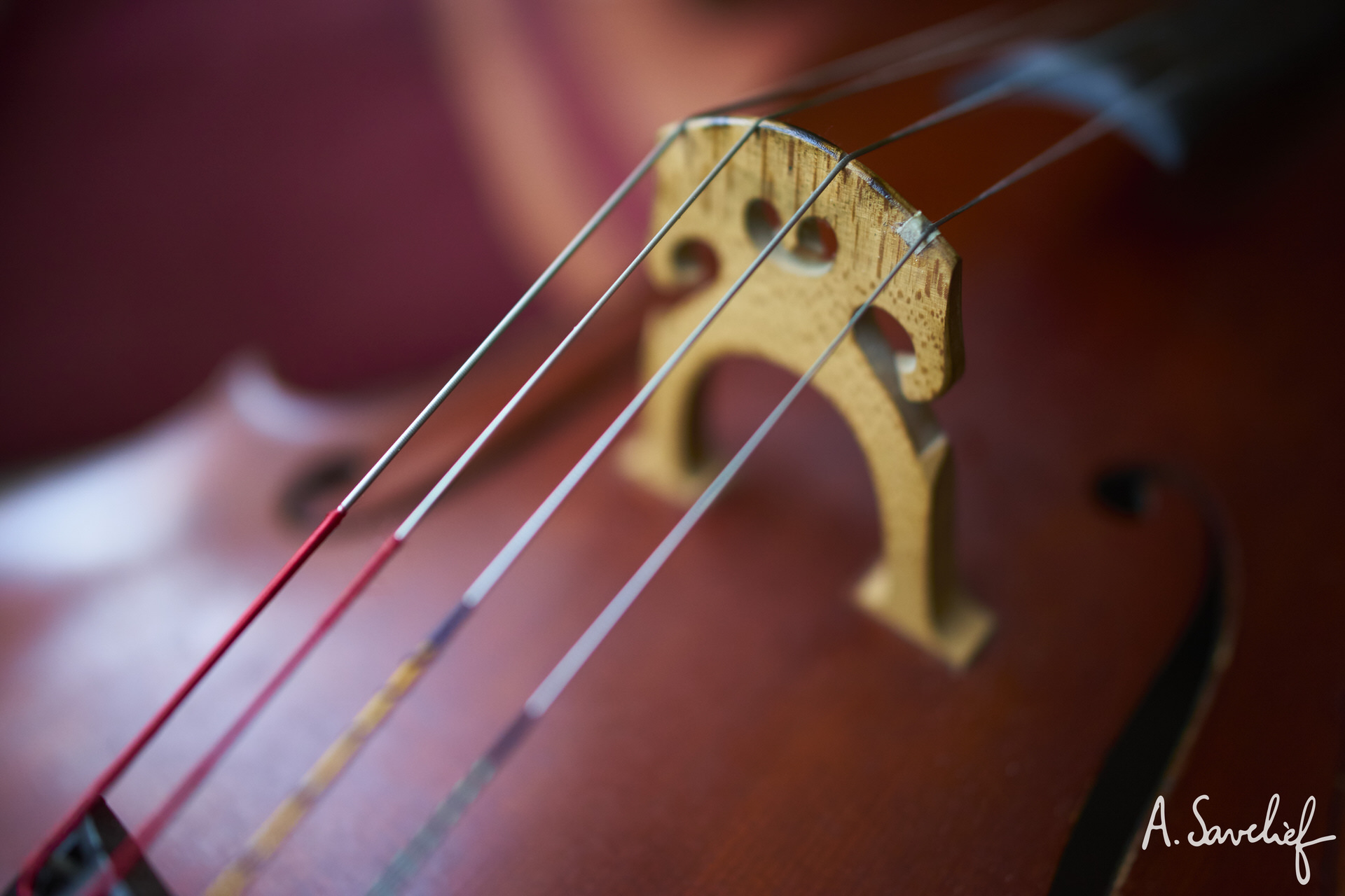 cordes et chevalet de violoncelle, haubans stylisés