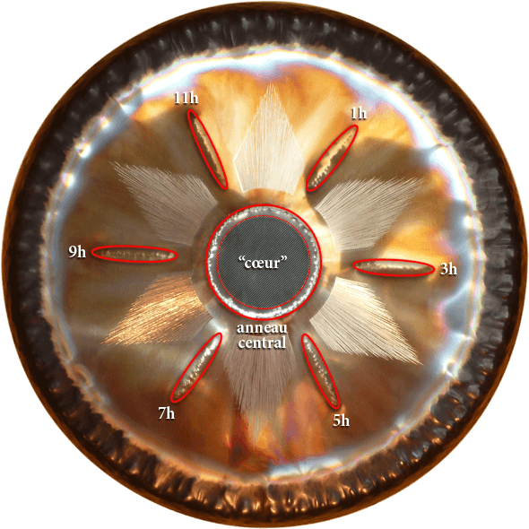 Carte du Gong Tone of Life Éléments Thérapeutiques — Feu